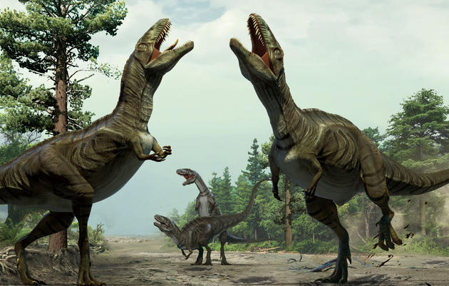 Like Birds, Dinosaurs Danced to Woo