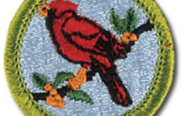 Bird Merit Badge