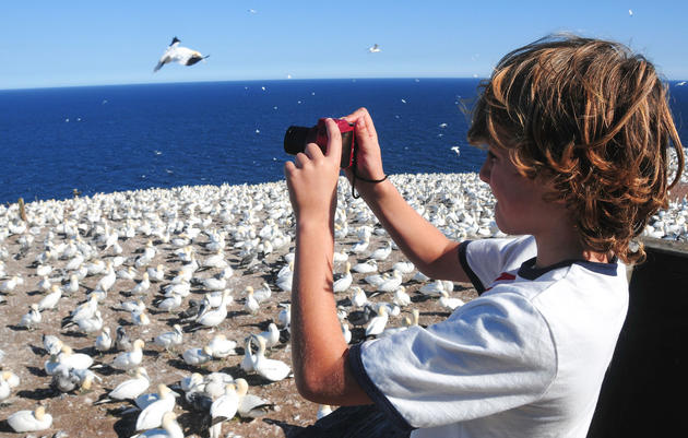 Inspire Children to Love Bird Photography